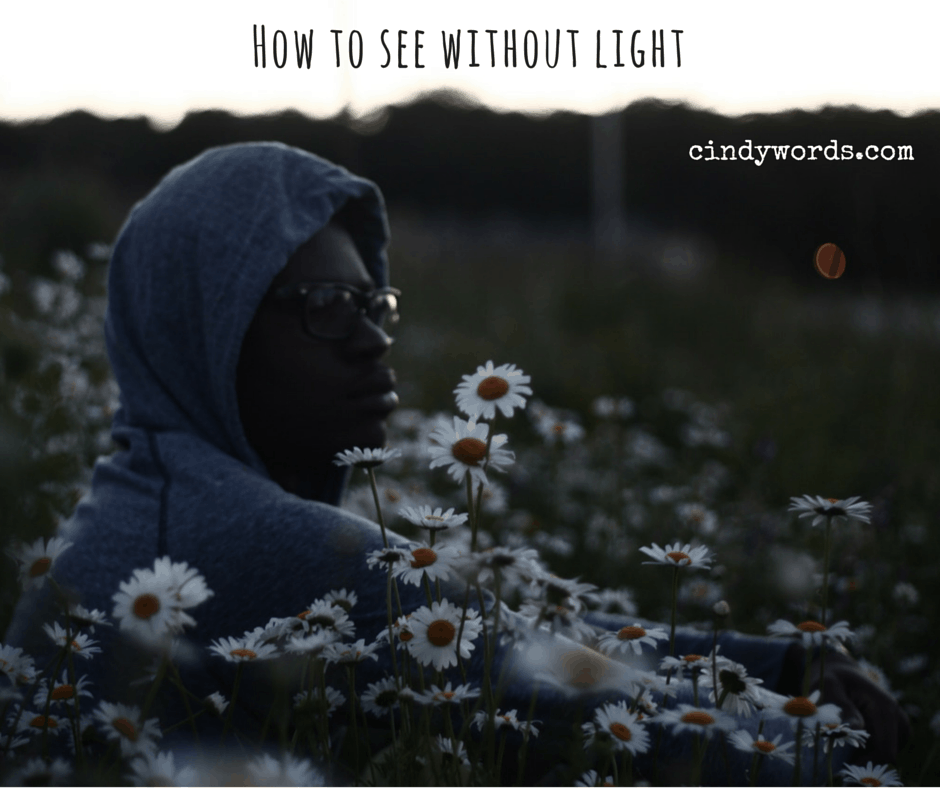 How do you see without light?
