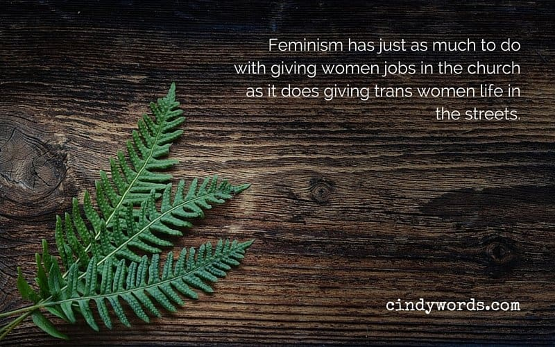 Feminism has just as much to do with giving women jobs in the church as it does giving trans women life in the streets.