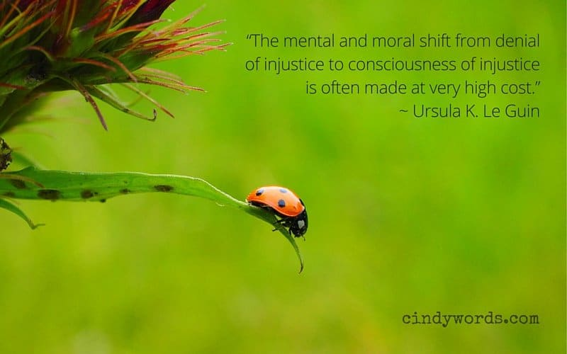 """""""The mental and moral shift from denial of injustice to consciousness of injustice is often made at very high cost."""""""